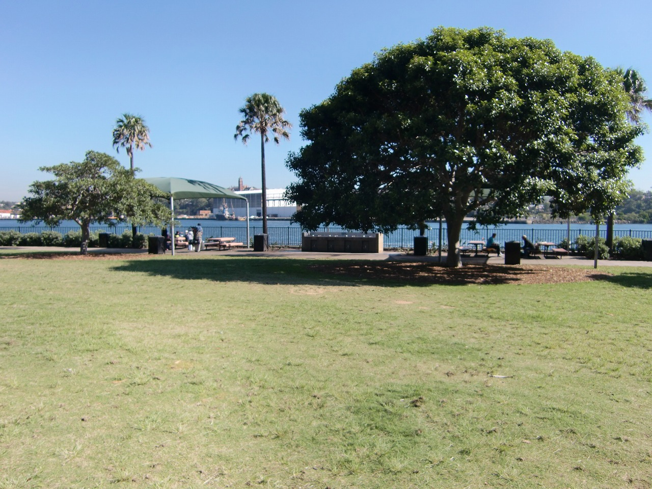 Pyrmont Point Park is a good place to just relax and enjoy the view.